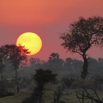Sunset over Okavango Delta, Botswana Notext